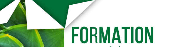 Formations – Calendrier Automne 2020